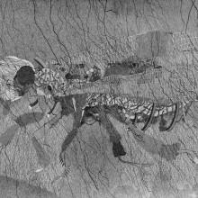 南花奈/Kana Minami《要塞ハニービー/Fortress, Honey Bee》 2016, 51.5x36.4cm, ink on paper
