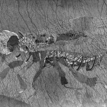 南花奈/Kama Minami 《要塞ハニービー/Fortress, honey bee》 2016, 36.4x51.5cm, ink on paper