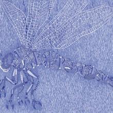 南花奈/Kana Minami 《Dragonfly No.2》 2019, 19×24cm, 紙、インク