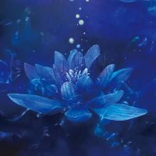 伊東明日香/Asuka Ito 《青い宇宙に咲く清らかな愛》 2020, 80.3×65.2cm, パネル、油彩